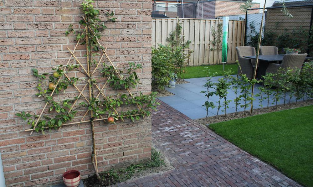 Moderne kleine en gezellige tuin greencolors - Aangelegde tuin ideeen ...
