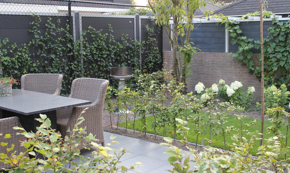 Moderne kleine en gezellige tuin